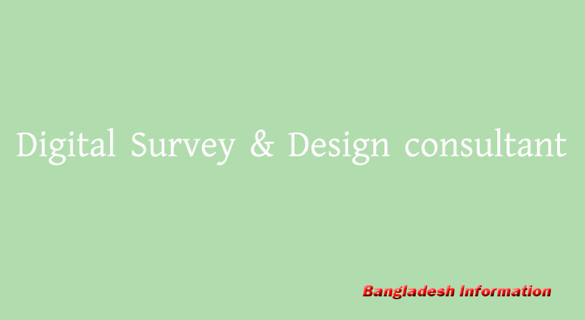 Digital Survey & Design consultant